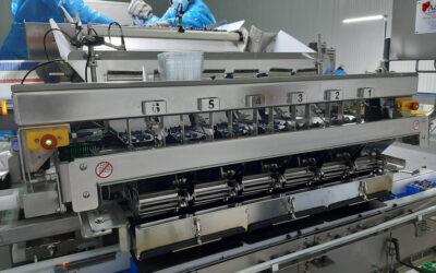 Centro de processamento frutos vermelhos COAPE