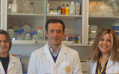 Cientistas da UC descobrem que o consumo continuado de mirtilo tem um forte impacto no fígado
